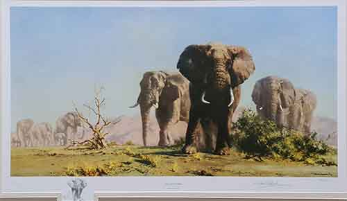 david shepherd, The Ivory is Theirs, original drawing