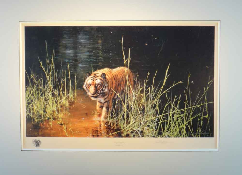 david shepherd  jungle gentleman print