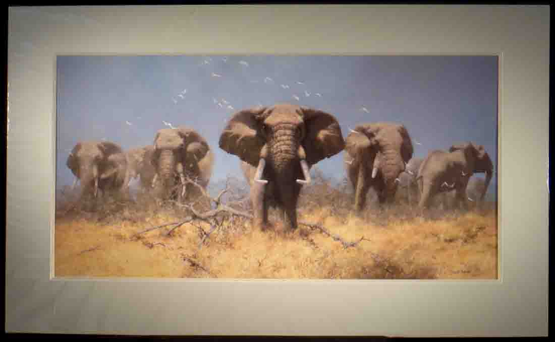 david shepherd signed limited edition print just elephants