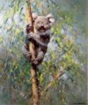 david shepherd koala prints