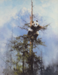david shepherd, the last refuge, pandas, print
