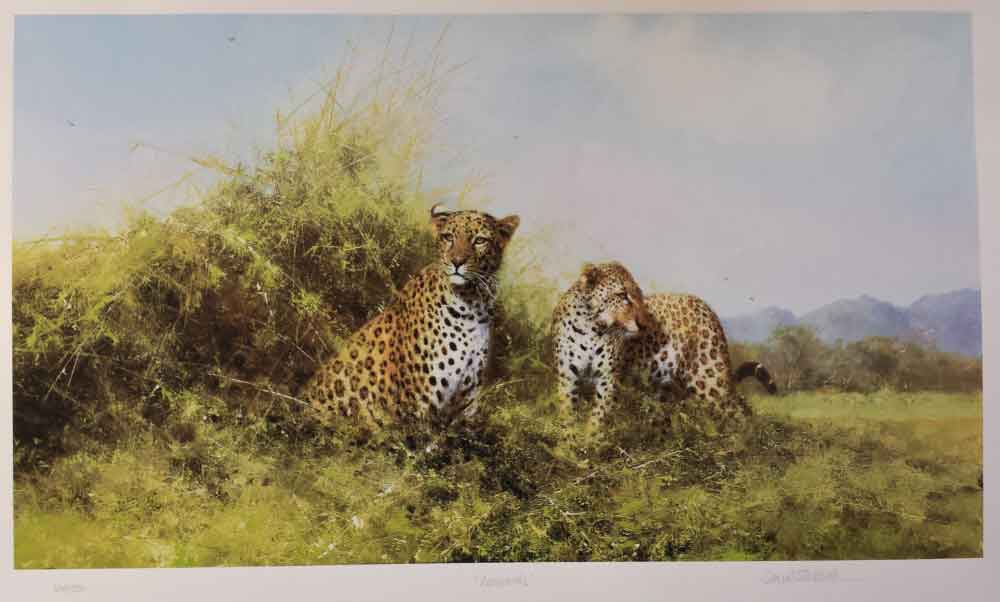 david shepherd leopards silkscreen