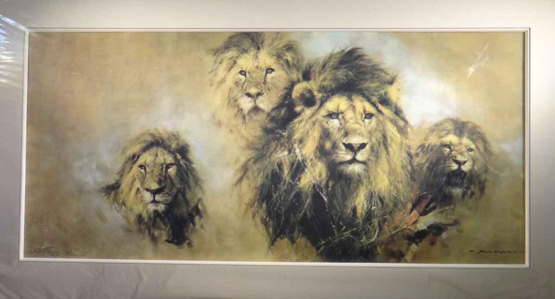 david shepherd, Lion Majesty, print