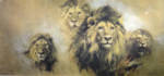 david shepherd lion majesty print