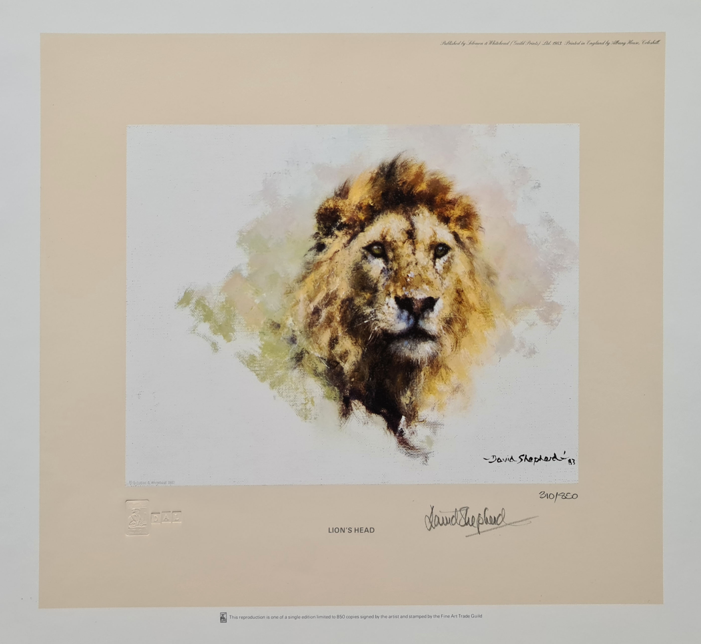 david shepherd, Lion's Head, signed, limited edition