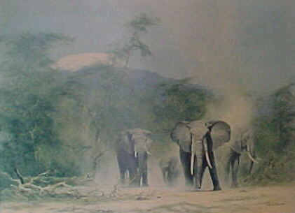 david shepherd  lords of the jungle print