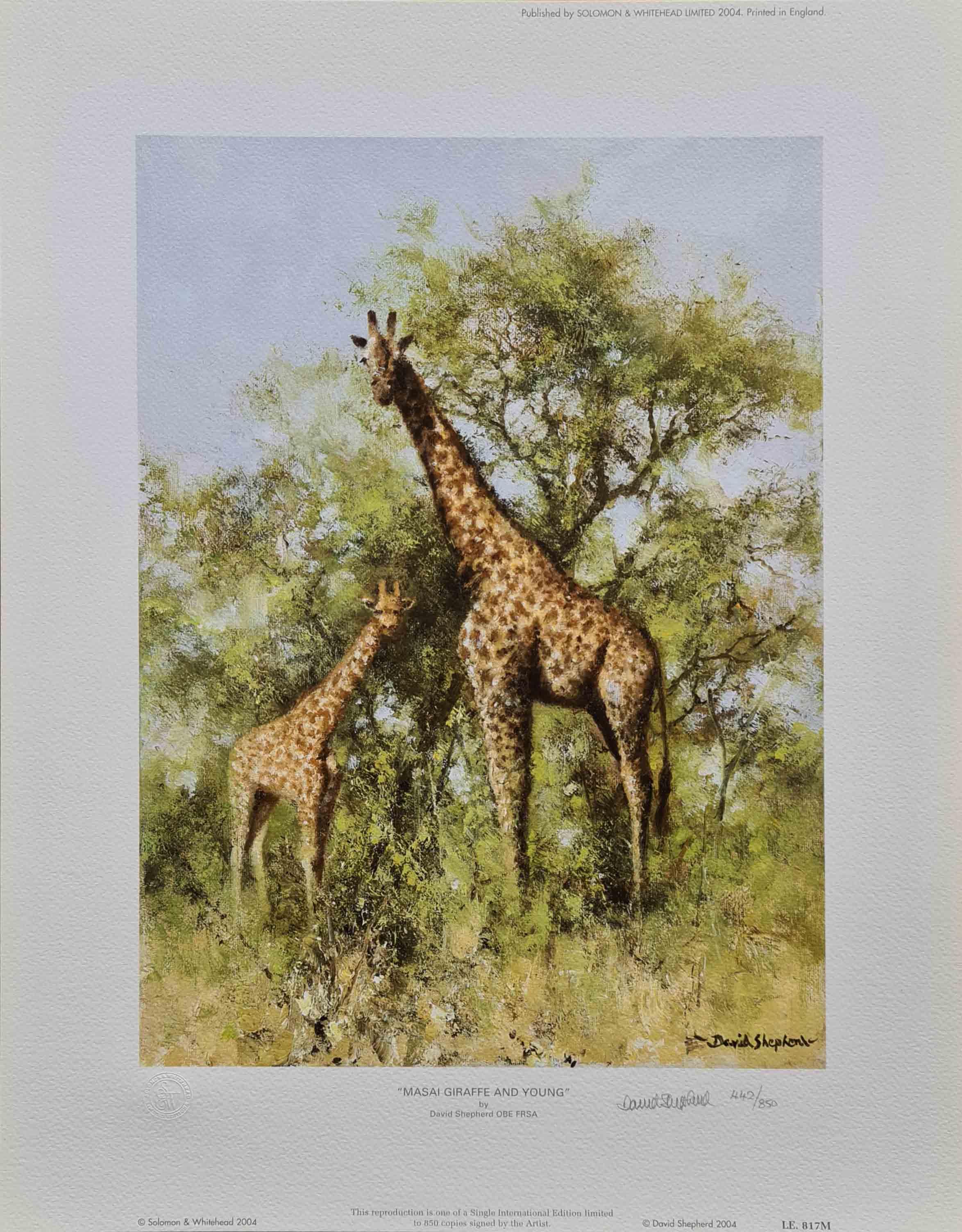 david shepherd, Masai Giraffe and Young, print