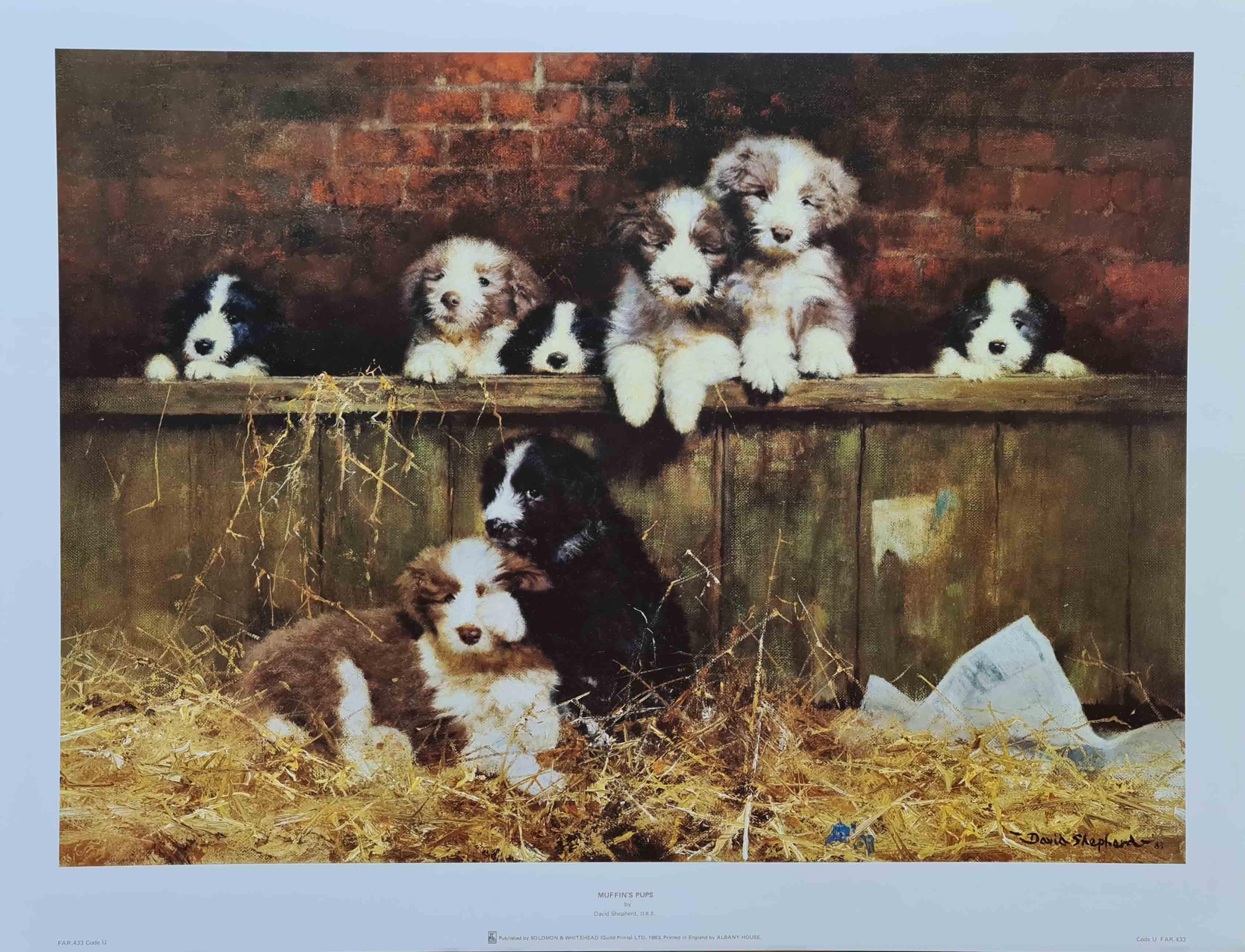 muffin's pups print