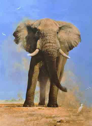 david shepherd My Savuti Friend silkscreen elephants print