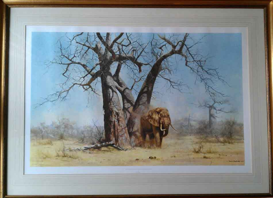 david shepherd old george under his favourite baobab tree