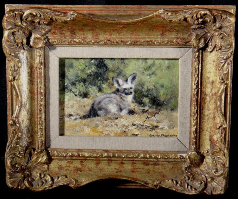 david shepherd original, bat eared fox, painting