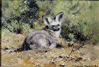 david shepherd, painting, bat eared fox