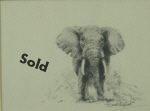 david shepherd elephant original drawing