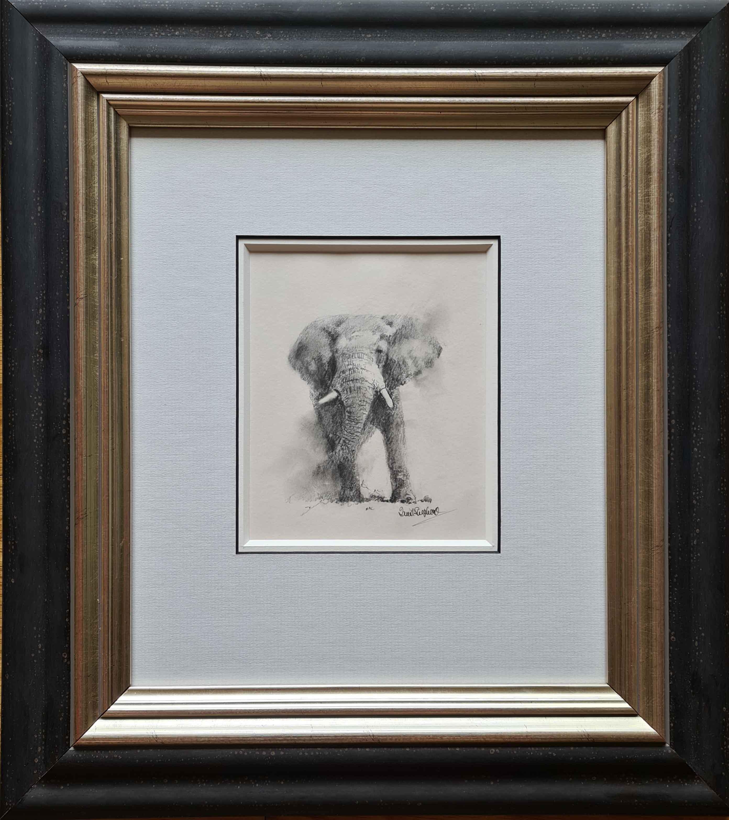david shepherd original elephant drawing