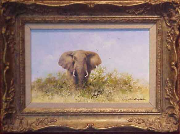 david shepherd elephant oil painting