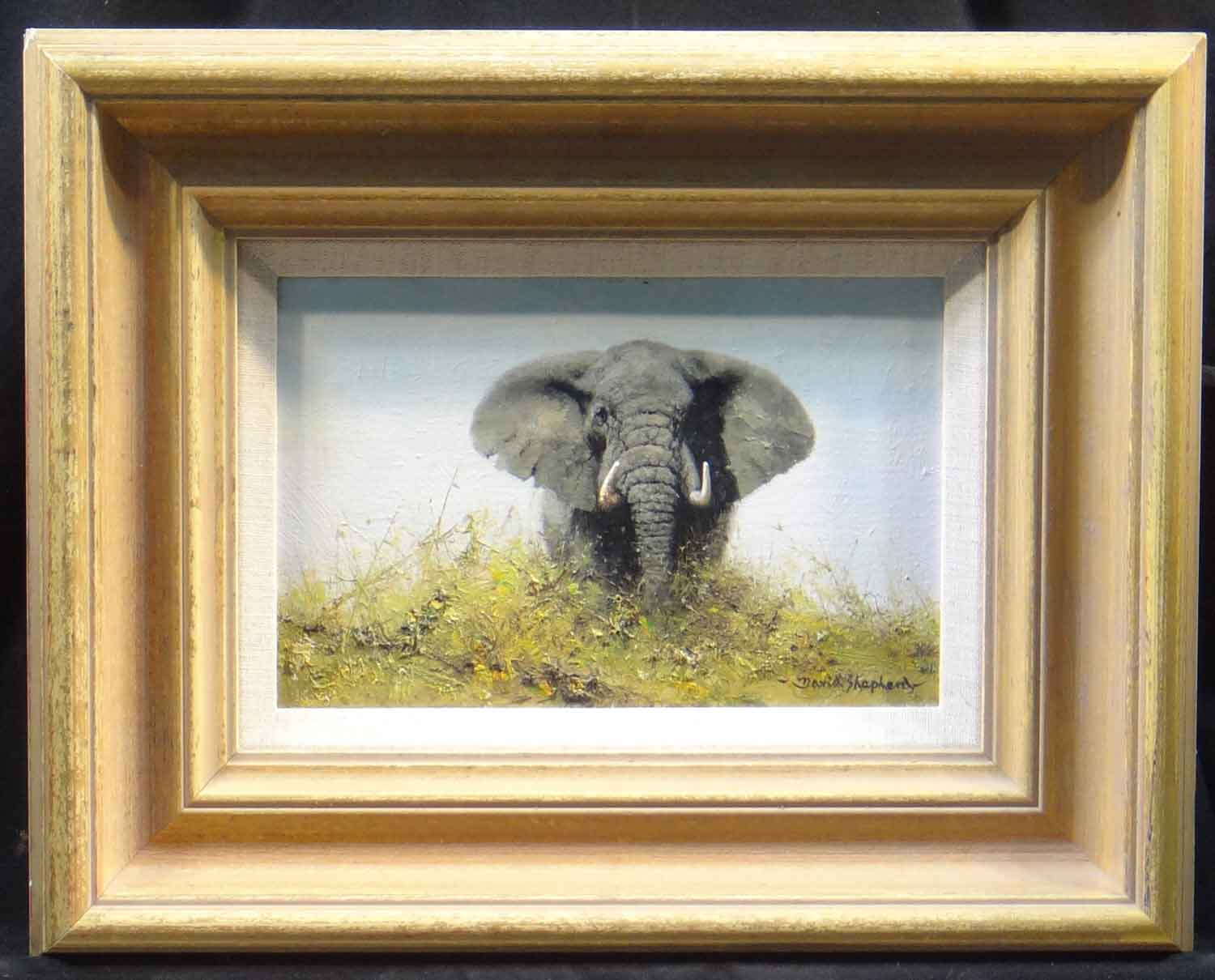 david shepherd original elephant