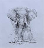 david shepherd, original drawing , elephant