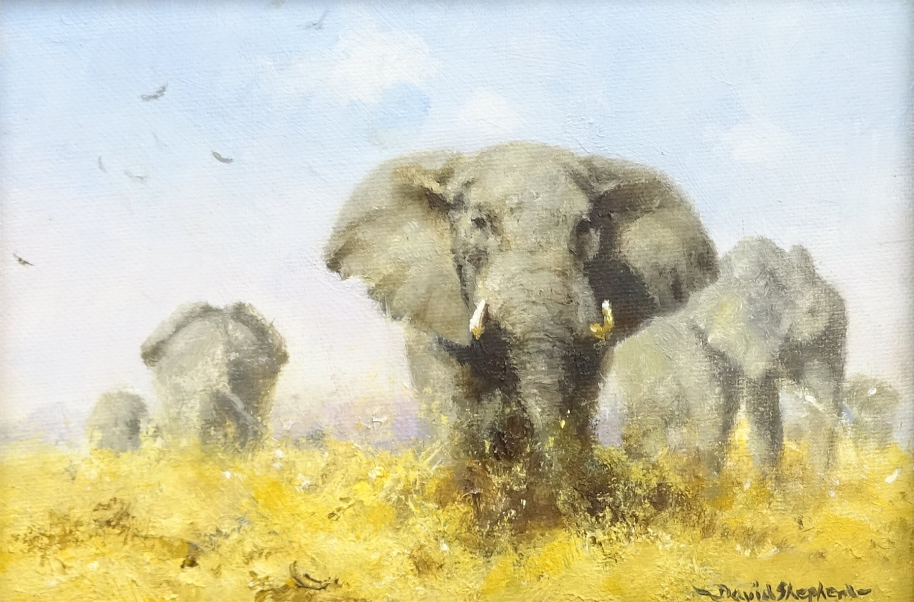 david shepherd, Elephants, original painting