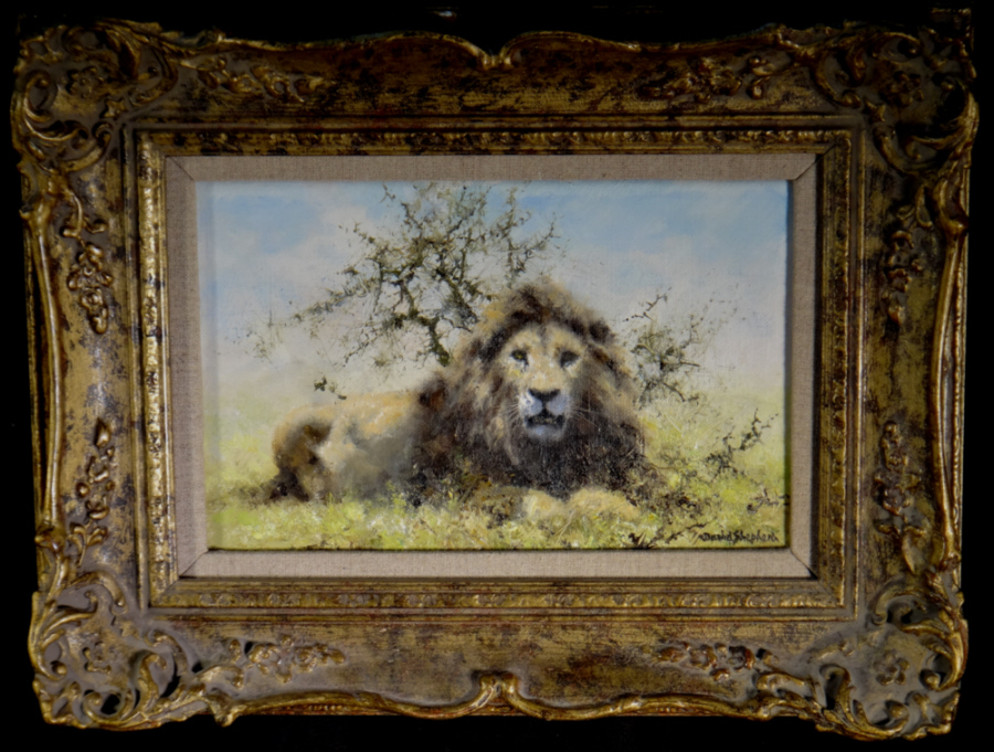 david shepherd original, lion, painting
