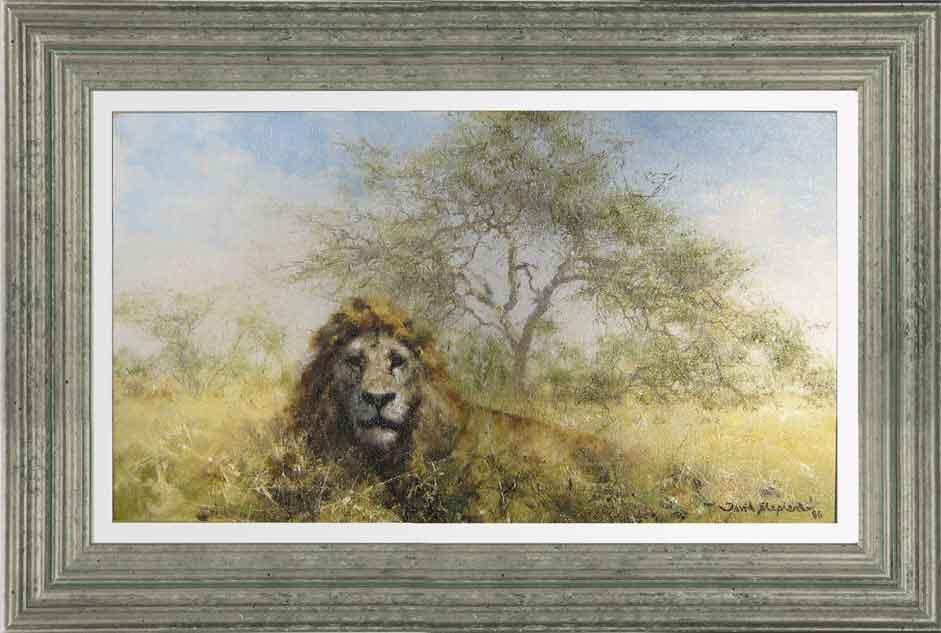 david shepherd, lion, original