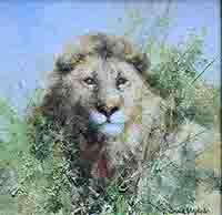 david shepherd, original painting, lion, 7