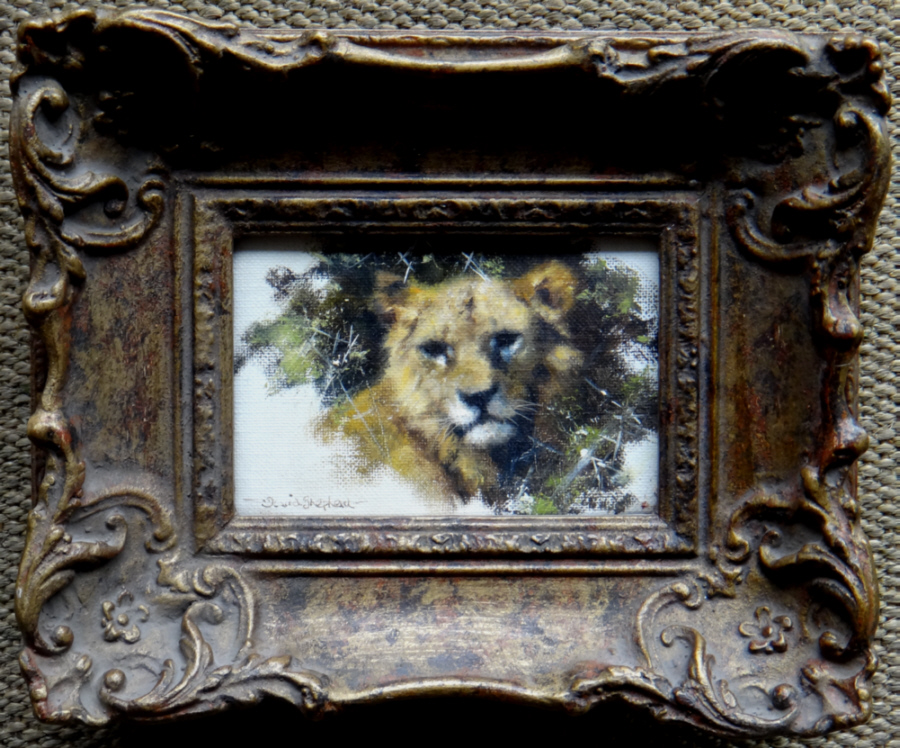 david shepherd original, lion cub, painting
