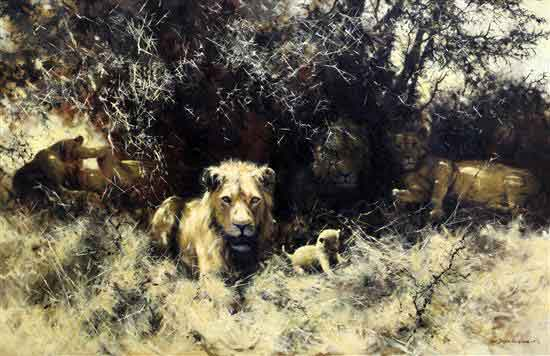 david shepherd lions original sold