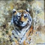 david shepherd, original, tiger