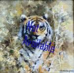 david shepherd, tiger