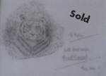david shepherd tiger drawing