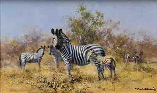 david shepherd, painting zebra