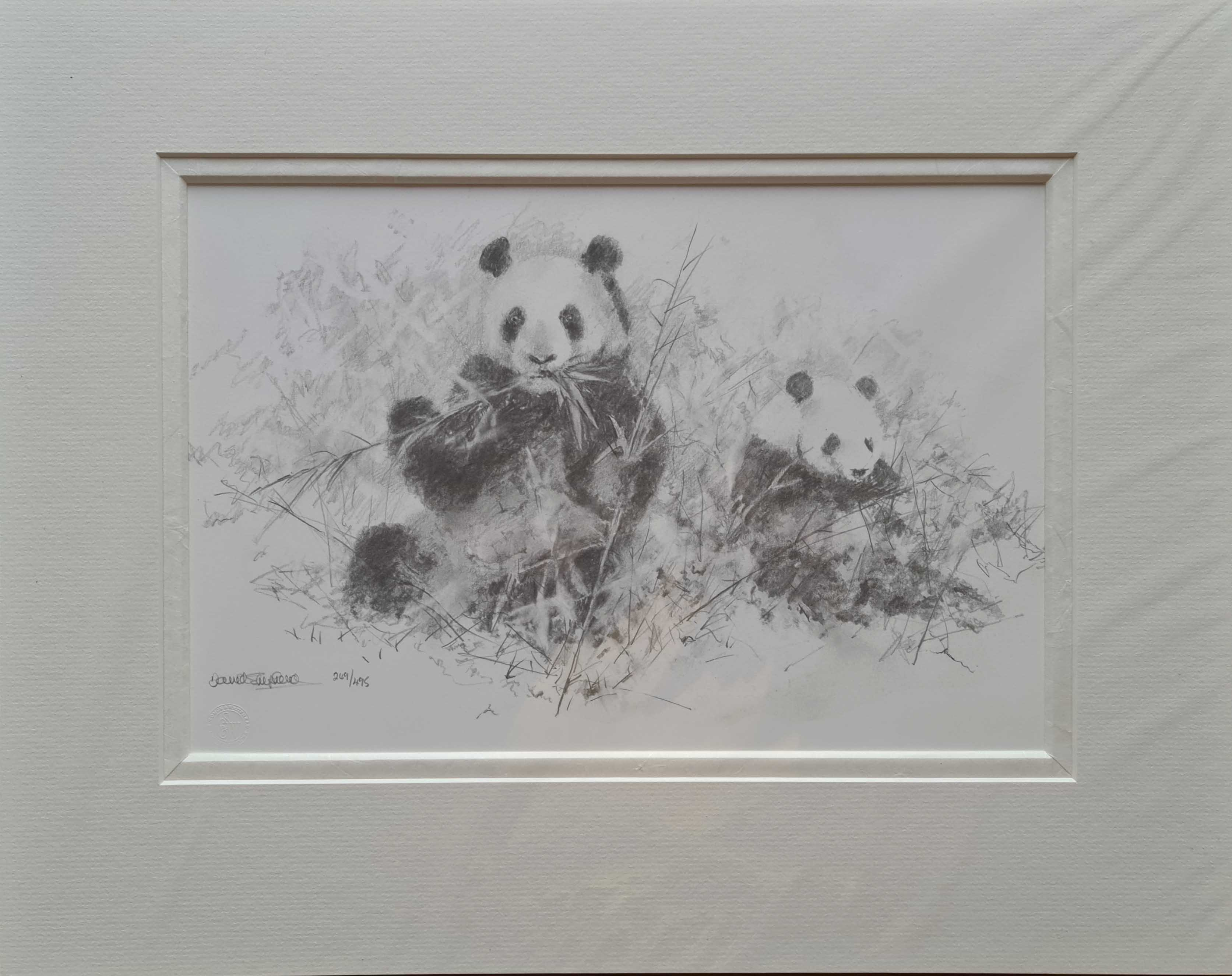 david shepherd pandas sketch 2006