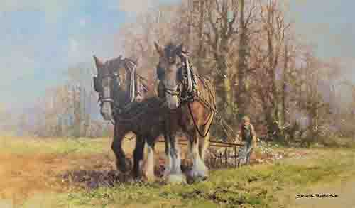 davidshepherd-ploughteam