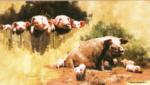 david shepherd porkers