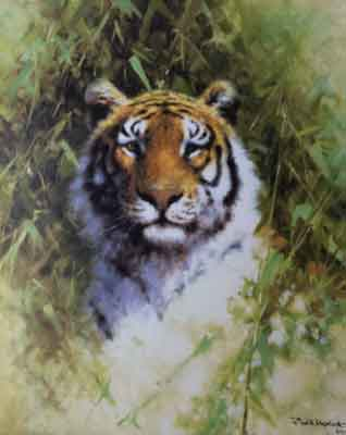 david shepherd tigers prints