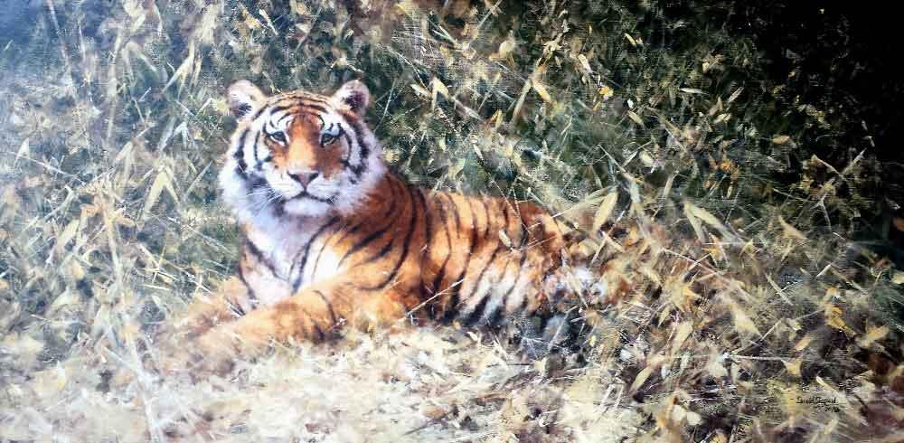 david shepherd ranthambore tiger giclee