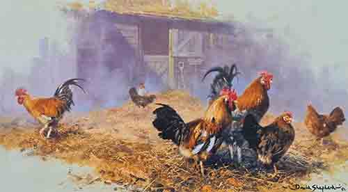 david shepherd the pride hens poultry print