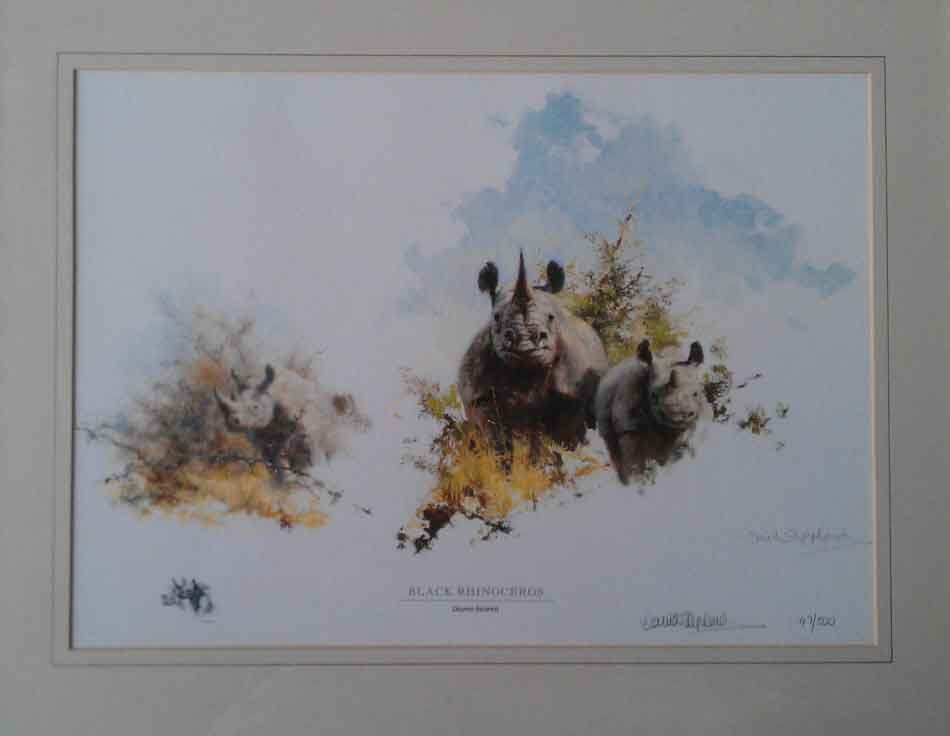 david shepherd, Black Rhinoceros, signed limited edition print