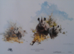 david shepherd black rhinoceros sappi print