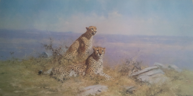 david shepherd  serengeti signed limited edition print