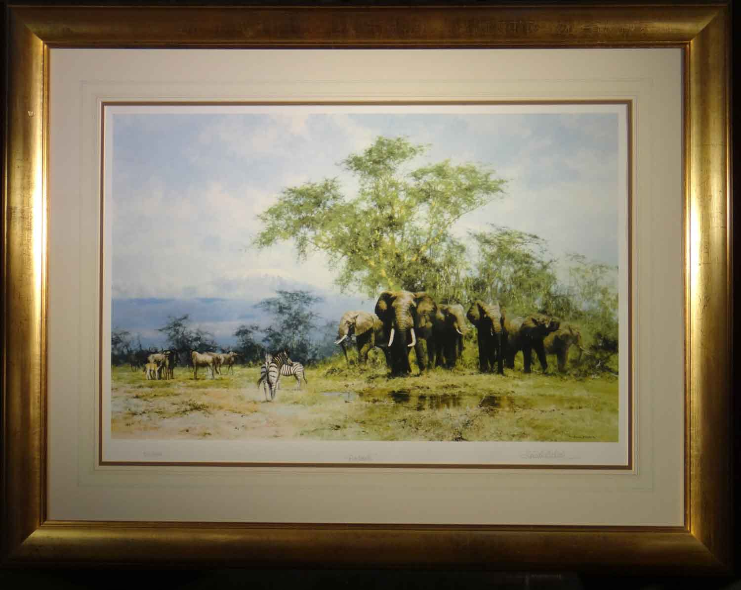 david shepherd signed limited edition print Amboseli