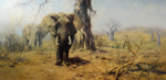 david shepherd land of the baobab trees elephants print