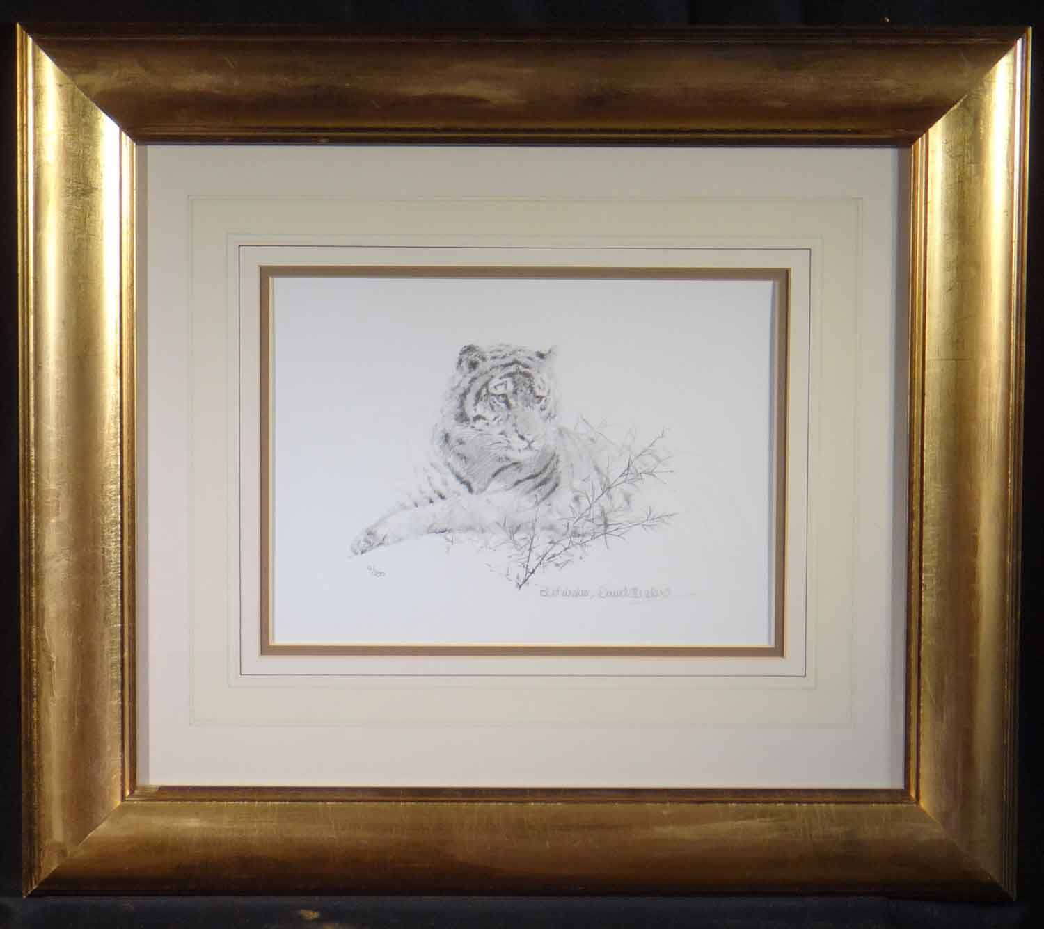 david shepherd Portrait of a Tiger sketch