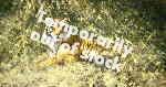 david shepherd Ranthambore tiger giclee print