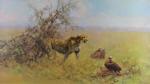 david shepherd scavengers print
