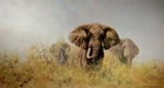 david shepherd three happy jumboselephants, signed print
