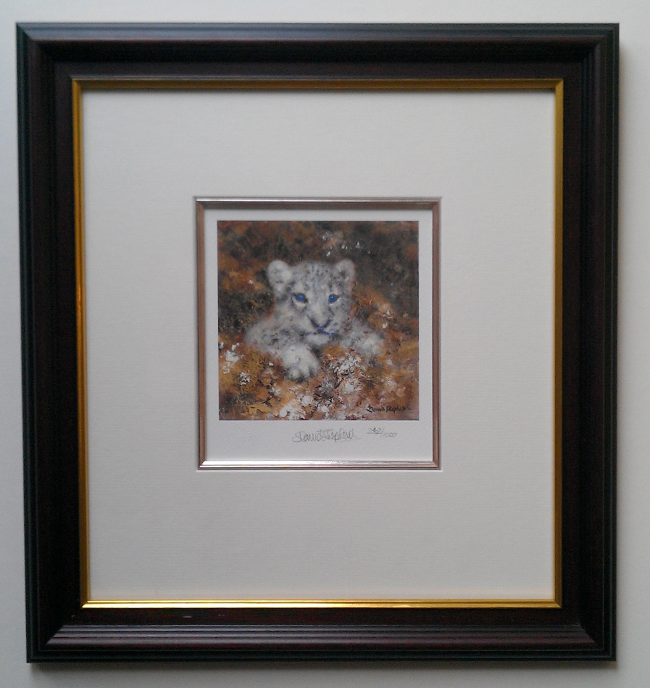 david shepherd snow leopard cub cameo framed