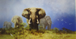 david shepherd, storm over Africa, silkscreen elephants print
