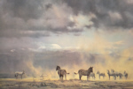 david shepherd storm over amboseli