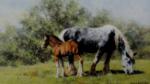 david shepherd Summertime, horses, print